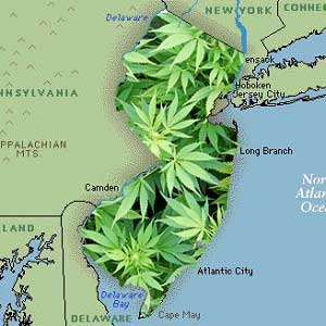 Second Medical Marijuana Dispensary to Be Opened in Garden State this Summer