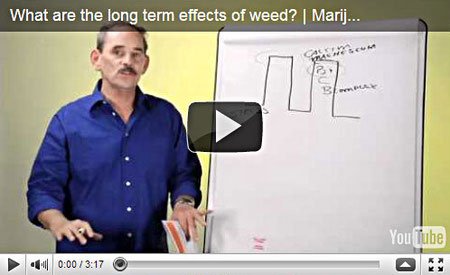 Long Term Effects of Cannabis